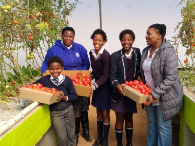 IMG_20170811Eastern-CapeSeyisi-Primary-School-Harvest