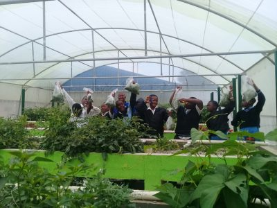 Students-showing-off-harvest017-11-28-at-12.16.27-(1)-Kempton-Park