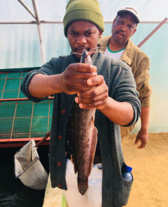 USAID Menzi with Catfish-cropped