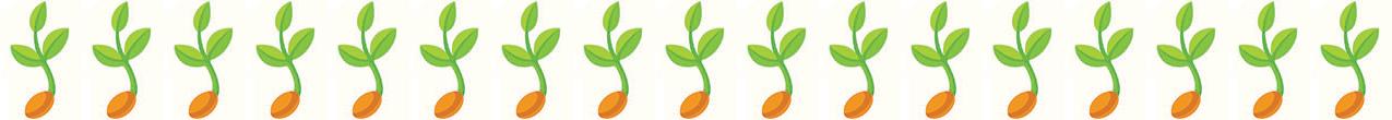 Seedling17