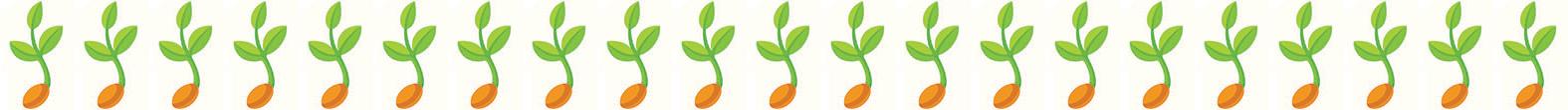 Seedling21