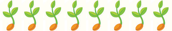 Seedling8