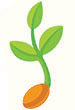 SeedlingNew